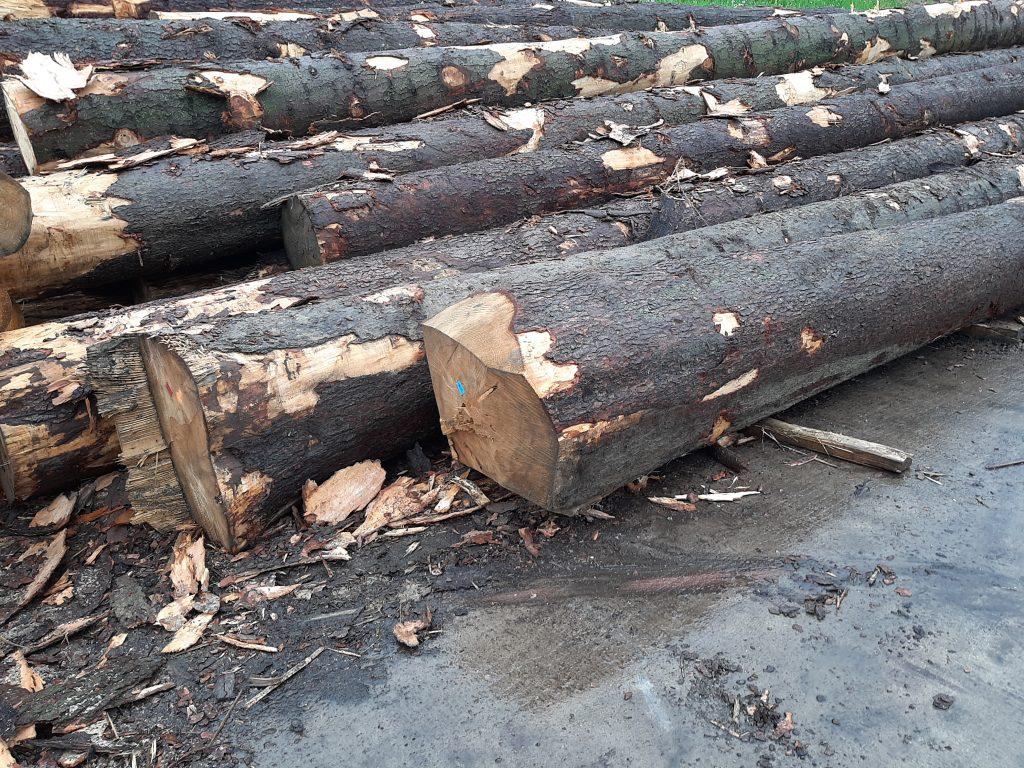 tartak drewno